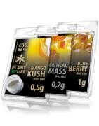 extraccion y resina de cbd